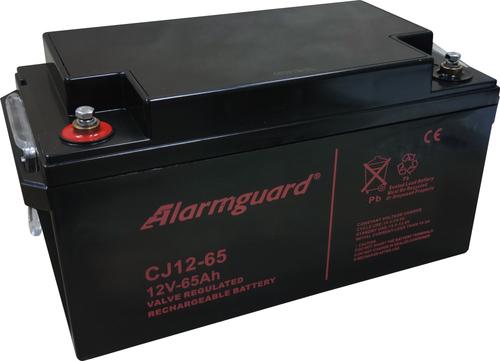 Alarmguard CJ12-65